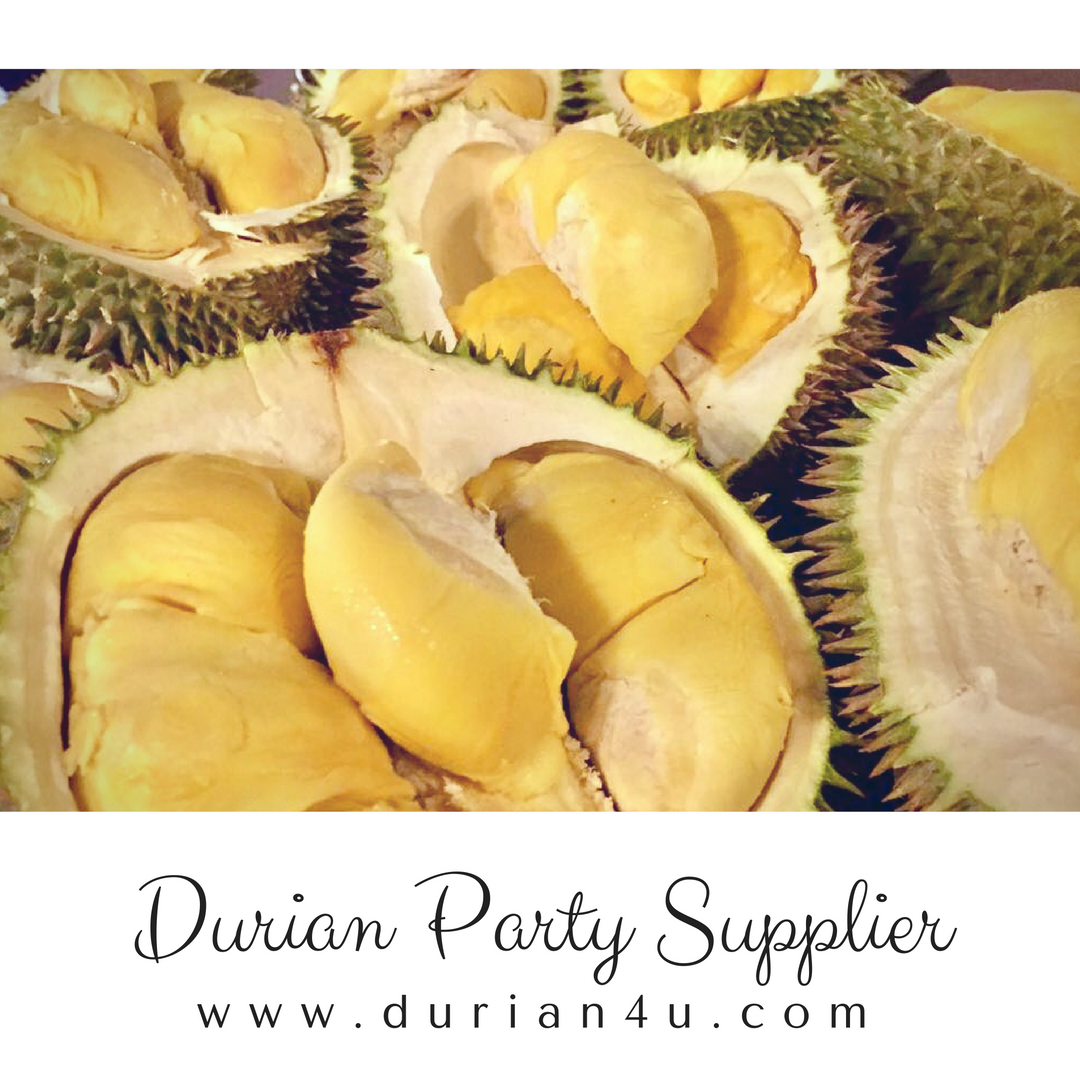 durian party event supplier kuala lumpur selangor malaysia